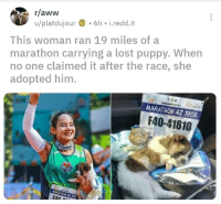 Aww, Tumblr, and Lost: r/aww  u/platdujour.6h i.redd.it  This woman ran 19 miles of a  marathon carrying a lost puppy. When  no one claimed it after the race, she  adopted him.  MARATHON 42.195K  F40-41810  FAn awesomacious:  Real wholesomeness