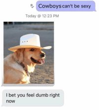 Dallas Cowboys, Dumb, and I Bet: R Cowboys can't be sexy  Today @ 12:23 PM  I bet you feel dumb right  now lol idiot