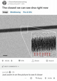 Memes, Zoom, and Best: r/Damnthatsinteresting  u/HeliumCan07 10h  The closest we can see dna right now  Image Mindblowing Pics & Gifs  會46.5k  974  1, Share  Award  BEST COMMENTS  Just zoom in on the picture to see it closer  Reply會14.6k↓