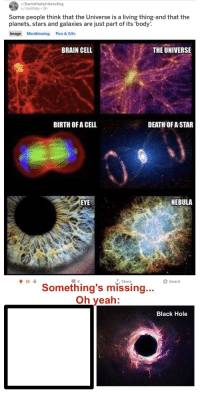 Reddit, Yeah, and Black: r/Damnthatsinteresting  u/JoeMaly 5h  Some people think that the Universe is a living thing-and that the  planets, stars and galaxies are just part of its body  Image Mindblowing Pics& Gifs  BRAIN CELL  THE UNIVERSE  BIRTH OF A CELL  DEATH OF A STAR  EYE  NEBULA  會16 ↓  ↑. Share  Award  something's missing...。  Oh yeah  Black Hole