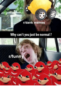 AAaAAaaAAhHhHh: r/dank memes  Why can't you just be normal ?  r/funny AAaAAaaAAhHhHh