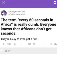 "Bro💀 @theo.2x: r/darkjokes 23h  u/pRincessCarla0  The term ""every 60 seconds in  Africa"" is really dumb. Everyone  knows that Africans don't get  seconds  They're lucky to even get a first  746  15  BEST Bro💀 @theo.2x"