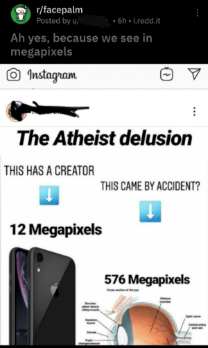 When the r/facepalm becomes the true facepalm: r/facepalm  Posted by u  6h. i.redd.it  Ah yes, because we see in  megapixels  Instagram  The Atheist delusion  THIS HAS A CREATOR  THIS CAME BY ACCIDENT?  12 Megapixels  576 Megapixels  Optic nerve  Central artery  nd vein  Comes When the r/facepalm becomes the true facepalm
