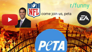 Funny, Nfl, and Peta: r/funny  NFL come join us, peta  ZA  PeTA This is where you belong now, peta