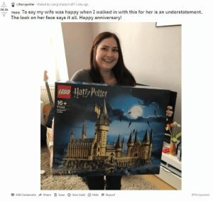 Lego, Tumblr, and Blog: r/harrypotter Posted by u/englishpsycho87 1 day ago  24.3k  u Media To say my wife was happy when I walked in with this for her is an understatement.  The look on her face says it all. Happy anniversary!  16+  71043  Cestie  530 ComShareSave Give Gold Hide Report  87% Upvoted awesomage:  The Ultimate LEGO Hogwarts Castle