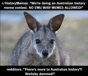 "I had no idea!: r/HistoryMemes: ""We're doing an Australian history  meme contest. NO EMU WAR MEMES ALLOWED!""  redditors: ""There's more to Australian history?!  Wallaby damned!"" I had no idea!"