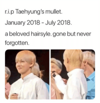 Never, Gone, and Beloved: r.i.p Taehyung's mullet.  January 2018 - July 2018.  a beloved hairsyle. gone but never  forgotten.