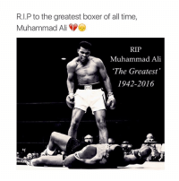 All these legends are dying 😔: R.I.P to the greatest boxer of all time,  Muhammad Ali  RIP  Muhammad Ali  The Greatest  1942-2016 All these legends are dying 😔