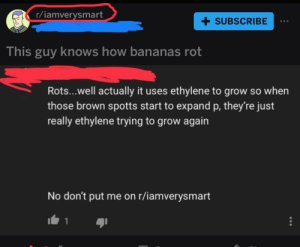 Absolute request defying madlad: r/iamverysmart  + SUBSCRIBE  This guy knows how bananas rot  Rots...well actually it uses ethylene to grow so when  those brown spotts start to expand p, they're just  really ethylene trying to grow again  No don't put me on r/iamverysmart Absolute request defying madlad
