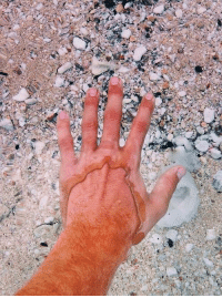 Memes, Water, and 🤖: R Incredible clear water!