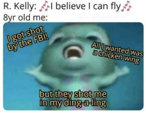 It's a known rule that you don't shoot people there.: R. Kelly: believe I can fly  8yr old me:  0 got shot  by the FB!  All Iwanted was  a chicken wing  but they shot me  in my ding-a-ling It's a known rule that you don't shoot people there.