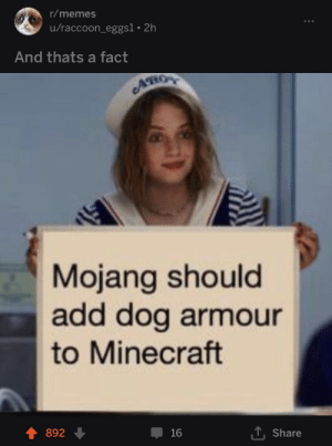 Memes, Minecraft, and Raccoon: r/memes  u/raccoon_eggs1. 2h  And thats a fact  AHOY  Mojang should  add dog armour  to Minecraft  T Share  892  16 Mojang
