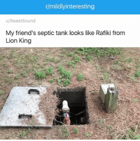 Everything the light touches is pareidolia...: r/mildly interesting  u/Sweet Sound  My friend's septic tank looks like Rafiki from  Lion King Everything the light touches is pareidolia...