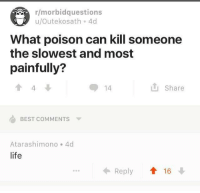 Life, Yeah, and Best: r/morbidquestions  u/Outekosath 4c  What poison can kill someone  the slowest and most  painfully?  4  14  Share  BEST COMMENTS  Atarashimono 4  life  Reply 16 Oh yeah !!