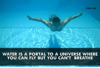Nato, Portal, and Water: r/nato_nob  WATER IS A PORTAL TO A UNIVERSE WHERE  YOU CAN FLY BUT YOU CAN'T BREATHE Did you know?