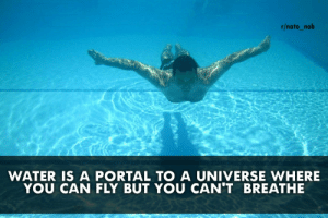 Funny, Nato, and Portal: r/nato_nob  WATER IS A PORTAL TO A UNIVERSE WHERE  YOU CAN FLY BUT YOU CAN'T BREATHE Did you know? via /r/funny https://ift.tt/2KQC8vR