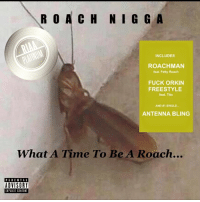 Blackpeopletwitter, Bling, and Church: R O  A C H NI G G A  INCLUDES  ROACHMAN  feat. Fetty Roach  FUCK ORKIN  FREESTYLE  feat. Tito  AND SINGLE.  ANTENNA BLING  What A Time To Be A Roach...  PARENTAL  ADVISORY  EXPLICIT CONTENT here at church thanking God that my mixtape went platinum🔥🙏🏼