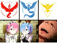 Pokemon Go in a nutshell.  Check our our exclusive Re:Zero goods: http://j.mp/2ePj4i5: -R Pokemon Go in a nutshell.  Check our our exclusive Re:Zero goods: http://j.mp/2ePj4i5