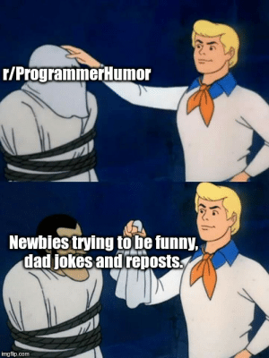 I'm sorry for the truth: r/ProgrammerHumor  Newbies trying to be funny,  dad jokes and reposts  imgflip.com I'm sorry for the truth