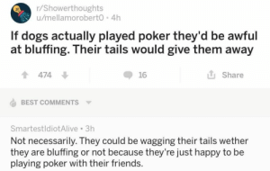 Dogs, Friends, and Funny: r/Showerthoughts  /mellamorobert0 4h  If dogs actually played poker they'd be awful  at bluffing. Their tails would give them away  Share  474  16  BEST COMMENTS  SmartestldiotAlive 3h  Not necessarily. They could be wagging their tails wether  they are bluffing or not because they're just happy to be  playing poker with their friends. 20+ Funny Tumblr Posts A Day Keeps Sadness Far Away (Episode #154)