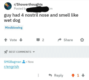 Wet dog 4 nostril smell good: r/Showerthoughts  Posted by  m  guy had 4 nostril nose and smell like  wet dog  Mindblowing  Share  Vote  2  BEST COMMENTS  SMGBagman  Now  r/engrish  1  Reply Wet dog 4 nostril smell good