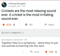 crickets: r/Showerthoughts  u/angels_fan 6h  Crickets are the most relaxing sound  ever. A cricket is the most irritating  sound ever.  310  Share  BEST COMMENTS ▼  apocalypse_meeoooW5h  Together they're a symphony - alone they're just  one asshole screaming into the dark  Reply4.9k