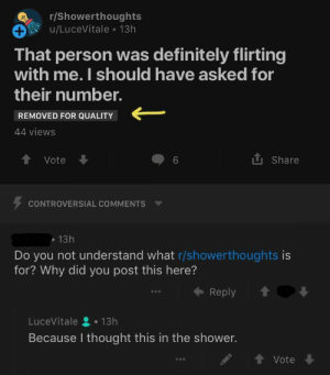 Dank, Definitely, and Memes: r/Showerthoughts  u/LuceVitale 13h  That person was definitely flirting  with me. I should have asked for  their number.  REMOVED FOR QUALITY  44 views  會vote  6  tl Share  CONTROVERSIAL COMMENTS ▼  13h  Do you not understand what r/showerthoughts is  for? Why did you post this here?  ← Reply  LuceVitale 으 . 13h  Because I thought this in the shower.  T Vote Me irl by action_jim FOLLOW HERE 4 MORE MEMES.