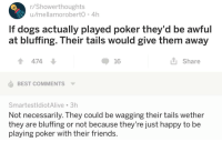 "Dogs, Friends, and Best: r/Showerthoughts  u/mellamoroberto 4h  If dogs actually played poker they'd be awful  at bluffing. Their tails would give them away  1474  16  L Share  BEST COMMENTS  SmartestldiotAlive 3h  Not necessarily. They could be wagging their tails wether  they are bluffing or not because they're Just happy to be  playing poker with their friends. <p>Too wholesome via /r/wholesomememes <a href=""http://ift.tt/2xdoDlo"">http://ift.tt/2xdoDlo</a></p>"