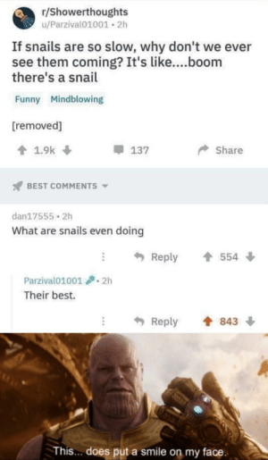 Funny, Life, and Memes: r/Showerthoughts  u/Parzival01001 2h  If snails are so slow, why don't we  see them coming? It's like....boom  there's a snail  Funny Mindblowing  [removed]  1.9k  Share  137  BEST COMMENTS  dan17555 2h  What are snails even doing  Reply  554  Parzival01001  2h  Their best.  Reply  843  This... does put a smile on my face Snail life is hard via /r/memes https://ift.tt/2K5oLJy