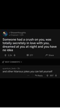 meirl: r/Showerthoughts  u/tropixen 10h  Someone had a crush on you, was  totally secretely in love with you,  dreamed at you at night and you have  no idea  2.2k  277  Share  BEST COMMENTS  quantum_feels 5h  and other hilarious jokes you can tell yourself  Reply897 meirl