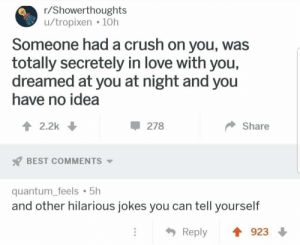 Hilarious Jokes: r/Showerthoughts  u/tropixen 10h  Someone had a crush on you, was  totally secretely in love with you,  dreamed at you at night and you  have no idea  2.2k  278  Share  BEST COMMENTS  quantum_feels 5h  and other hilarious jokes you can tell yourself  923  Reply