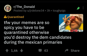 Memes, Tfw, and Mexican: r/The_Donald  Posted by u/jrdelone34 3h toughpigs  DE  STATES  VES  A Quarantined  tfw your memes are so  spicy you have to be  quarantined otherwise  you'd destroy the dem candidates  during the mexican primaries  Share  43  1,6k The_Donald is back with super spicy memes