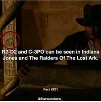Love, Memes, and R2-D2: R2-D2 and C-3PO can be seen in Indiana  Jones and The Raiders Of The Lost Ark.  Fact #231  @Starwarsfacts I love little references like these. starwarsfacts