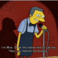 """Me irl: I'm Moe. Or as the ladies like to call me,  Hey, you behind the bushes."""" Me irl"""
