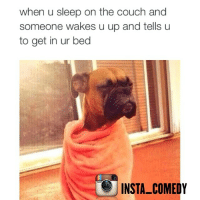 That's the shit I don't like 😭😭😭: when u sleep on the couch and  someone wakes u up and tells u  to get in ur bed  INSTA-COMEDY That's the shit I don't like 😭😭😭