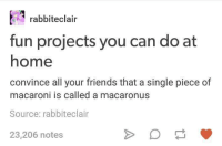 Eclairs: rabbit eclair  fun projects you can do at  home  convince all your friends that a single piece of  macaroni is called a macaronus  Source: rabbit eclair  23,206 notes