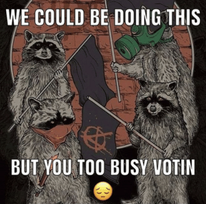 Raccoon Revolution: Raccoon Revolution