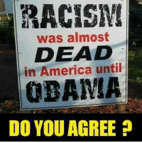 America, Obama, and White House: RACISN  was almost  DEAD  in America until  OBAMA  DO YOU AGREE Thank goodness Obama is no longer in the White House!