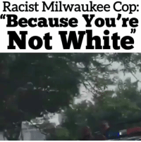 "Memes, Game, and Milwaukee: Racist Milwaukee Cop:  ""Because You're  Not White Public Service Announcement, to all my melinated Niiji of Turtle Island, be careful out there. The end game is near. Rp@thesavoyshow"