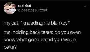 bake: rad dad  @ohemgeeijizzed  my cat: *kneading his blankey*  me, holding back tears: do you even  know what good bread you would  bake?