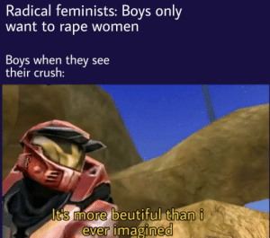 Crush, Memes, and Blue: Radical feminists: Boys only  want to rape women  Boys when they see  their crush:  Its more beutiful thani  ever imagined We need more red vs blue memes