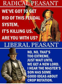 Memes, Good, and Masters: RADICAL PEASANT  WE'VE GOT TO GET  RID OF THIS FEUDAL  A  SYSTEM  IT'S KILLING US.  ARE YOU WITH US?  LIBERAL PEASANT  NO, NO, THAT'S  TOO EXTREME.  JUST WAIT UNTIL  WE GET A NEW LORD.  I HEAR THE MASTER'S  SON HAS SOME  GOOD IDEAS ABOUT  CROP ROTATION