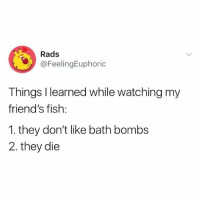 Friends, Fish, and Girl Memes: Rads  @FeelingEuphoric  Things I learned while watching my  friend's fish:  1. they don't like bath bombs  2. they die Poor fish