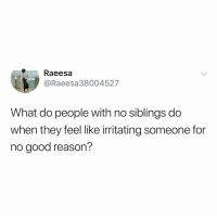 Good, Relatable, and For No Good Reason: Raeesa  @Raeesa38004527  What do people with no siblings do  when they feel like irritating someone for  no good reason? tag your sibling just to annoy them