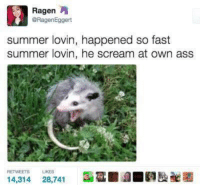 Ass, Scream, and Summer: Ragen  @RagenEggert  summer lovin, happened so fast  summer lovin, he scream at own ass  RETWEETS  LIKES  14,314 28,741  ■圃■  Eaae
