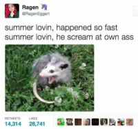 Ass, Scream, and Summer: Ragen  @RagenEggert  summer lovin, happened so fast  summer lovin, he scream at own ass  RETWEETS  LIKES  14,314  28,741  ■闢■gEaae