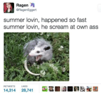 Ass, Scream, and Summer: @RagenEggert  summer lovin, happened so fast  summer lovin, he scream at own ass  RETWEETS  LIKES  14,314 28,741