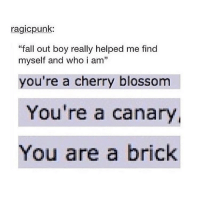 """{ funnytumblr textposts funnytextpost tumblr funnytumblrpost tumblrfunny followme tumblrfunny textpost tumblrpost haha}: ragicpunk:  """"fall out boy really helped me find  myself and who i am""""  you're a cherry blossom  You're a canary,  You are a brick { funnytumblr textposts funnytextpost tumblr funnytumblrpost tumblrfunny followme tumblrfunny textpost tumblrpost haha}"""