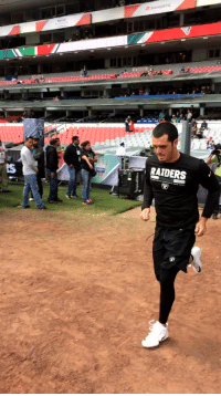 Memes, Mexico, and Raiders: RAIDERS  is Meanwhile, in Mexico City...  @derekcarrqb takes the field for warmups! #NEvsOAK #RaiderNation #NFLMexico https://t.co/GaeyUZ5J6X