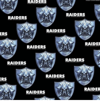 Community, Memes, and Raiders: RAIDERS  RAIDERS  RAIDERS  RAIDERS  RAIDERS  ERS  RAIDER  RAIDERS  RAIDERS  RAIDERS  RAIDERS  ON  RAIDER  RAIDERS  FAN CONVENTION Community · 925 people